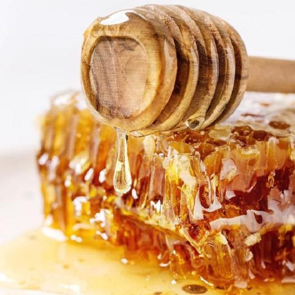 La miel orgánica de Yucatán, una joya en todos sus sentidos