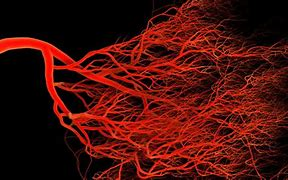 La Agencia Europea investiga vacuna AstraZeneca por problemas en vasos sanguíneos